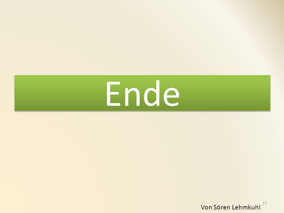 Ende Von Sören Lehmkuhl