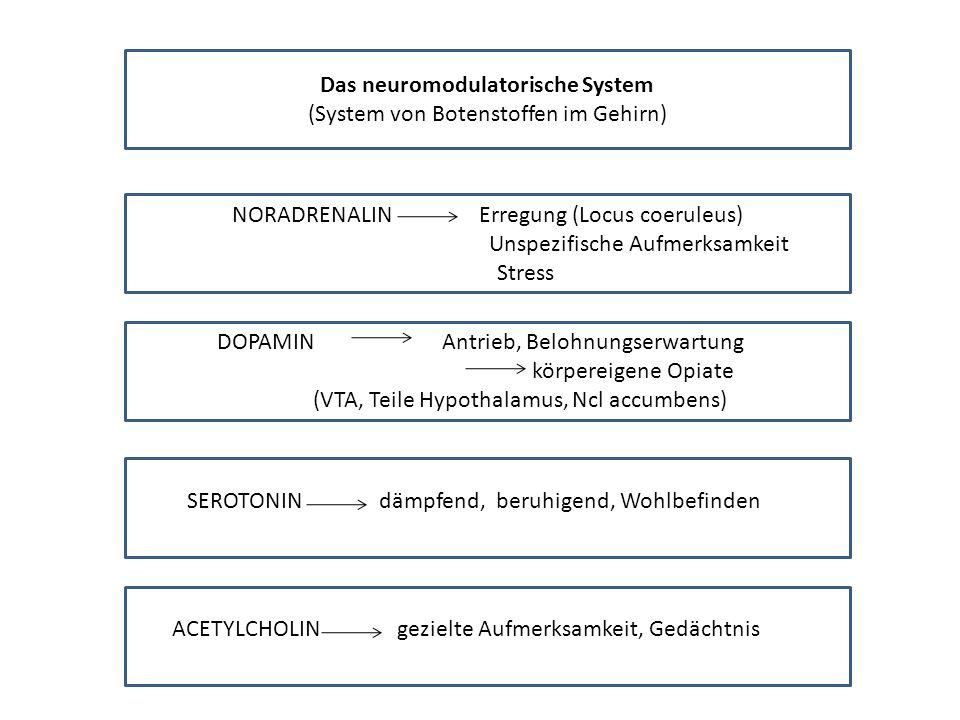 Das neuromodulatorische System