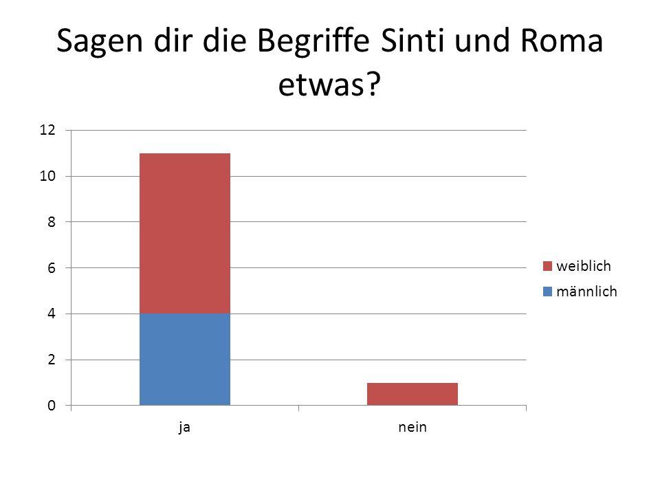 Sagen dir die Begriffe Sinti und Roma etwas