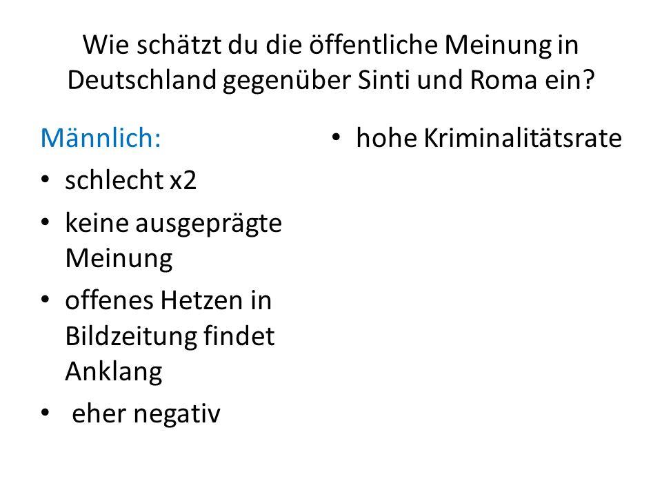 Wie schätzt du die öffentliche Meinung in Deutschland gegenüber Sinti und Roma ein