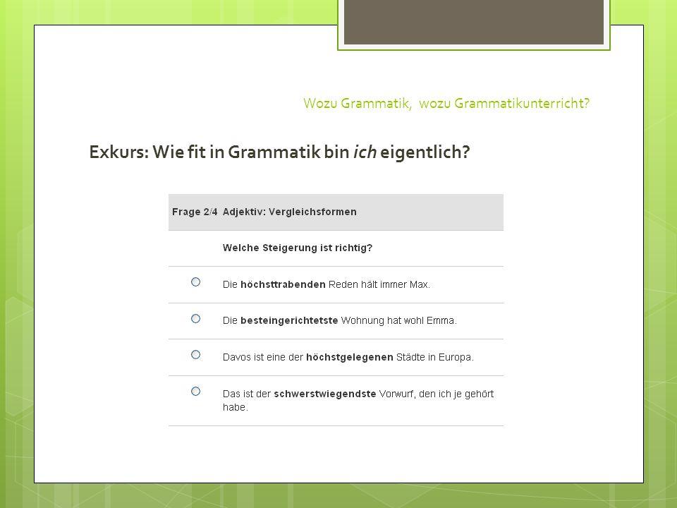 Wozu Grammatik, wozu Grammatikunterricht