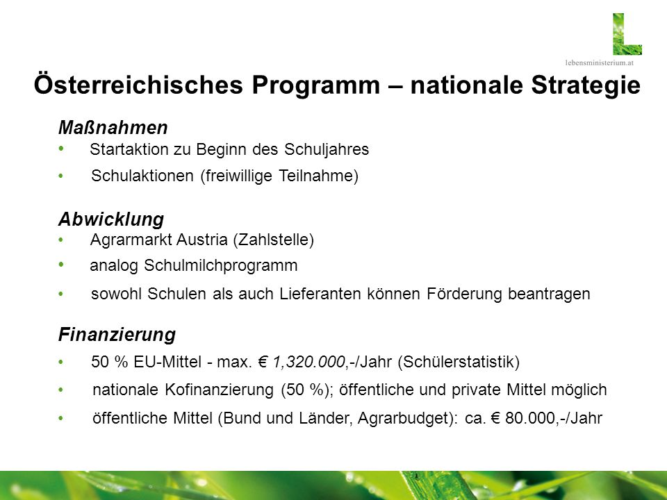 Österreichisches Programm – nationale Strategie
