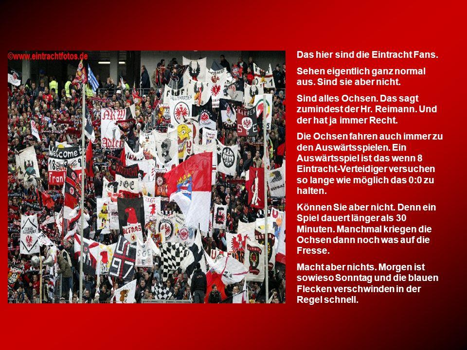 Das hier sind die Eintracht Fans.