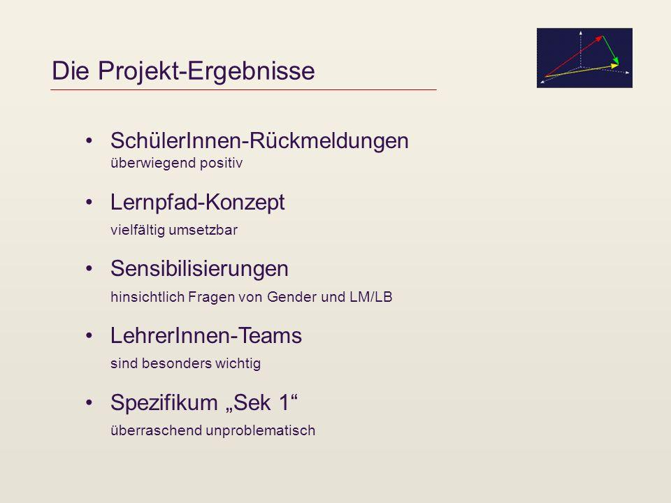 Die Projekt-Ergebnisse