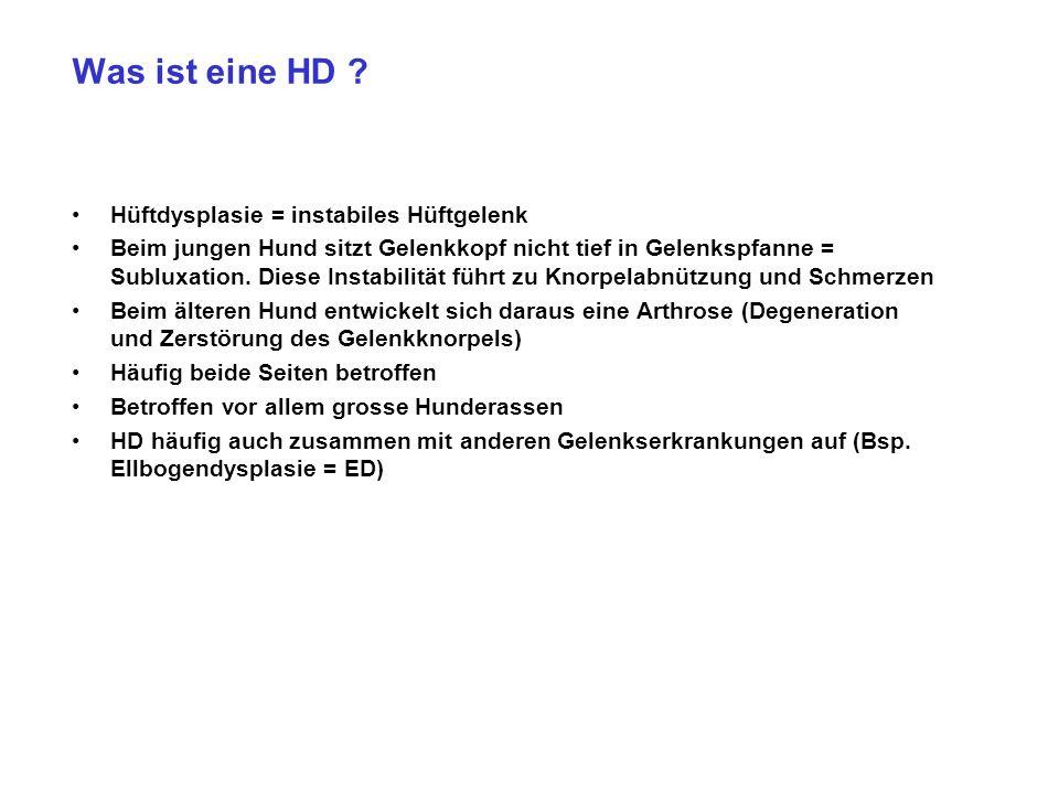 Was ist eine HD Hüftdysplasie = instabiles Hüftgelenk