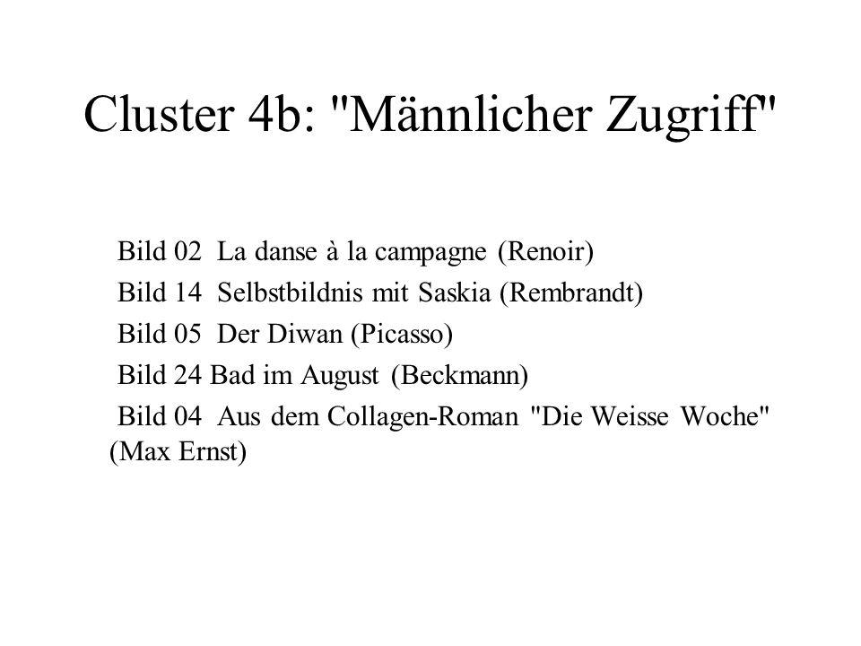 Cluster 4b: Männlicher Zugriff