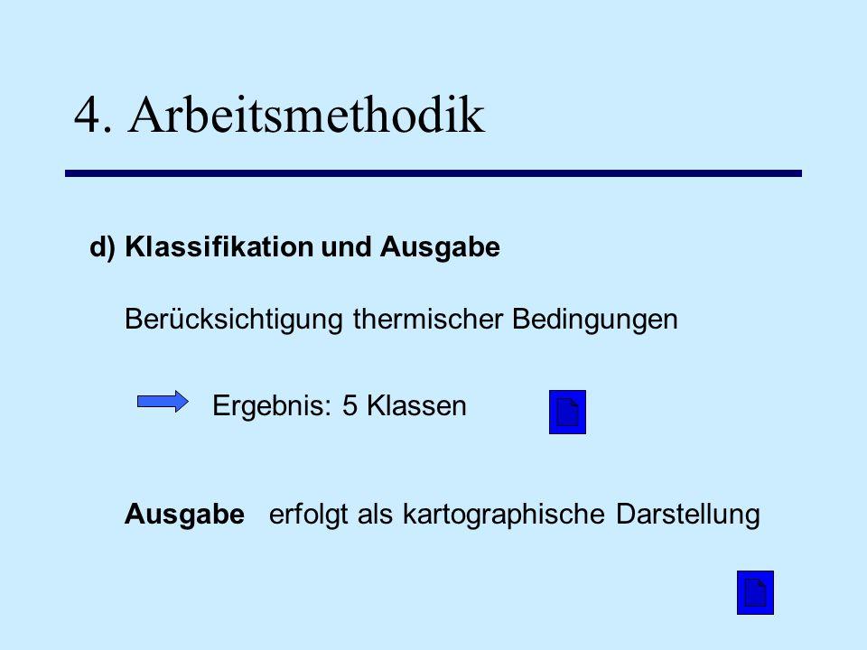 d) Klassifikation und Ausgabe