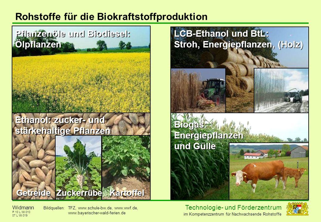 Rohstoffe für die Biokraftstoffproduktion