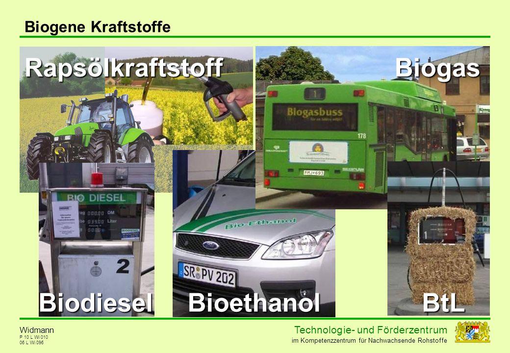 Rapsölkraftstoff Biogas Biodiesel Bioethanol BtL Biogene Kraftstoffe