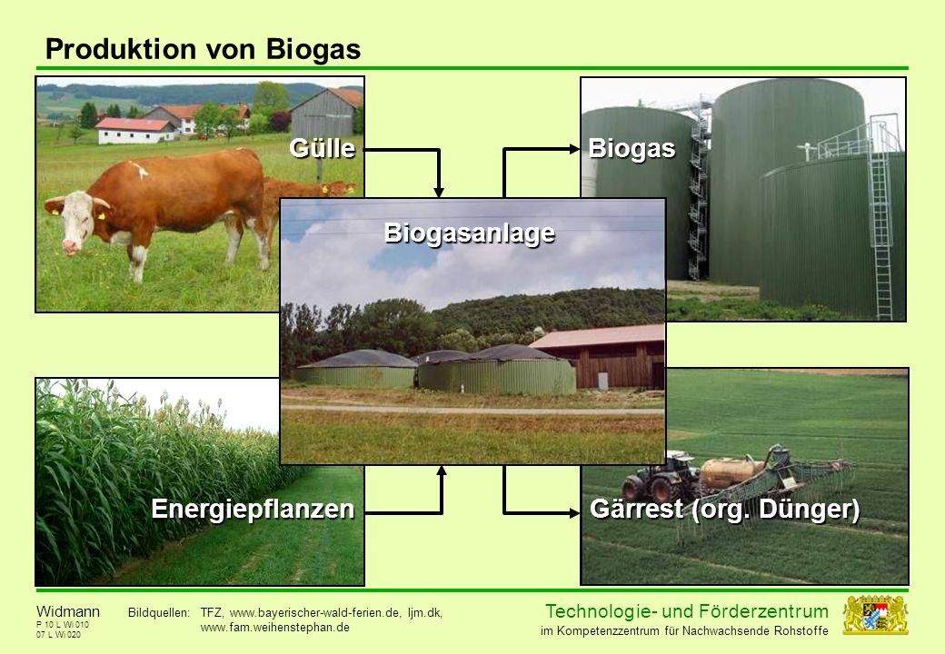 Produktion von Biogas Gülle Biogas Biogasanlage Energiepflanzen