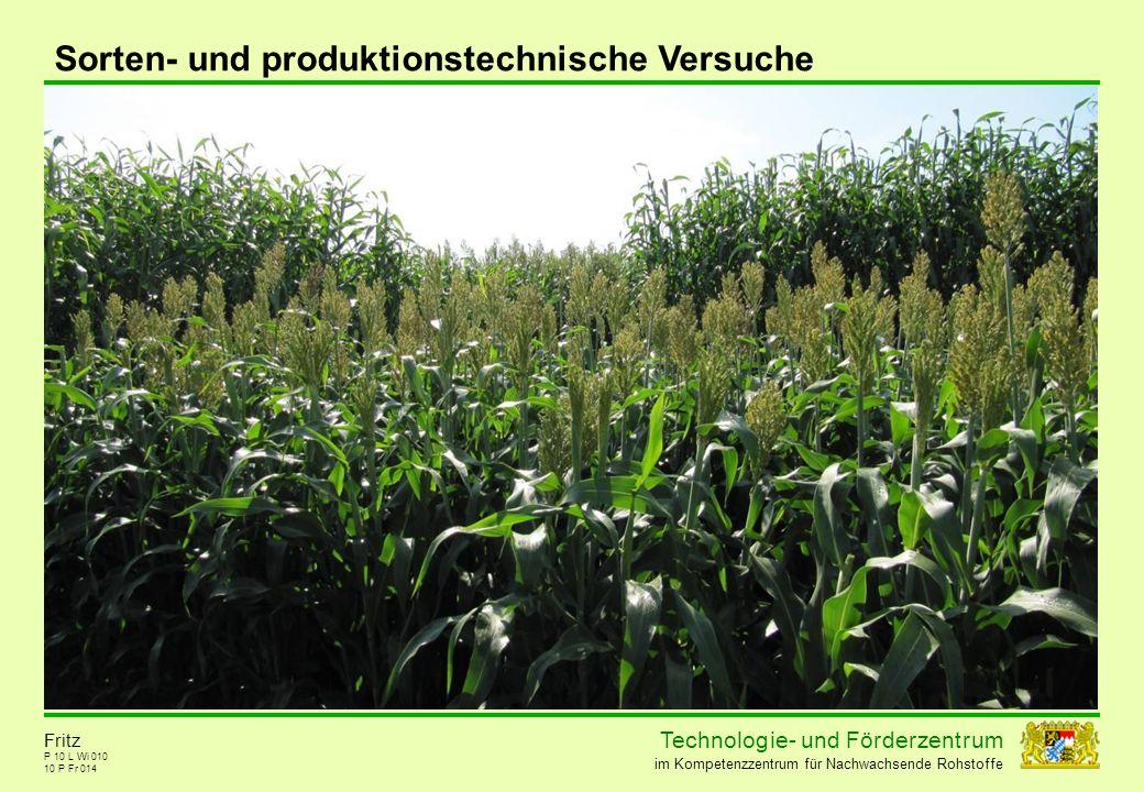 Sorten- und produktionstechnische Versuche