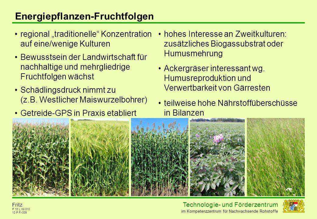 Energiepflanzen-Fruchtfolgen