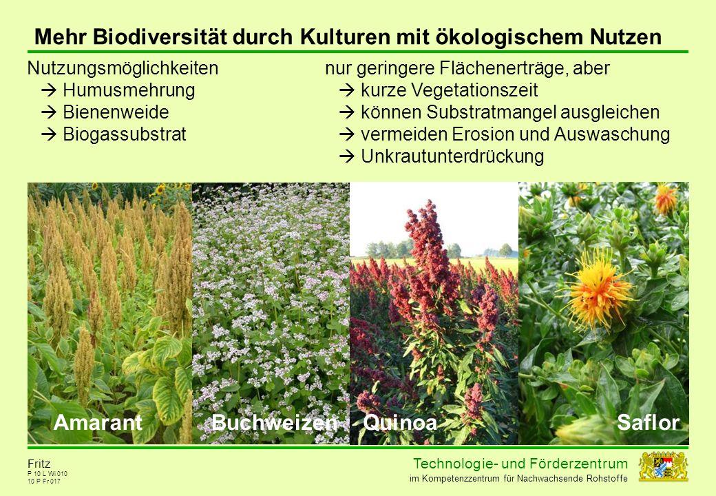 Mehr Biodiversität durch Kulturen mit ökologischem Nutzen