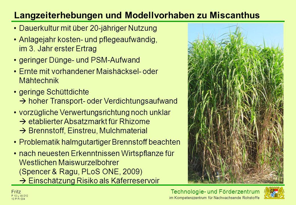 Langzeiterhebungen und Modellvorhaben zu Miscanthus