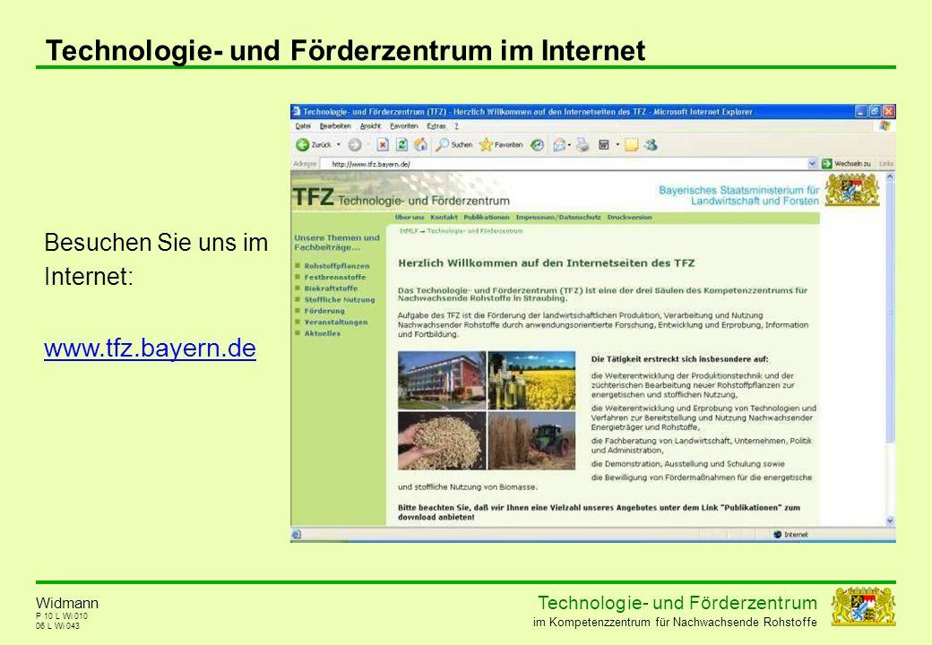 Technologie- und Förderzentrum im Internet