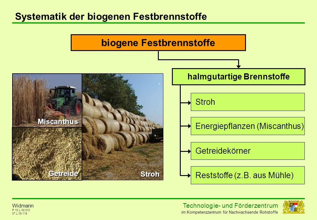 biogene Festbrennstoffe halmgutartige Brennstoffe