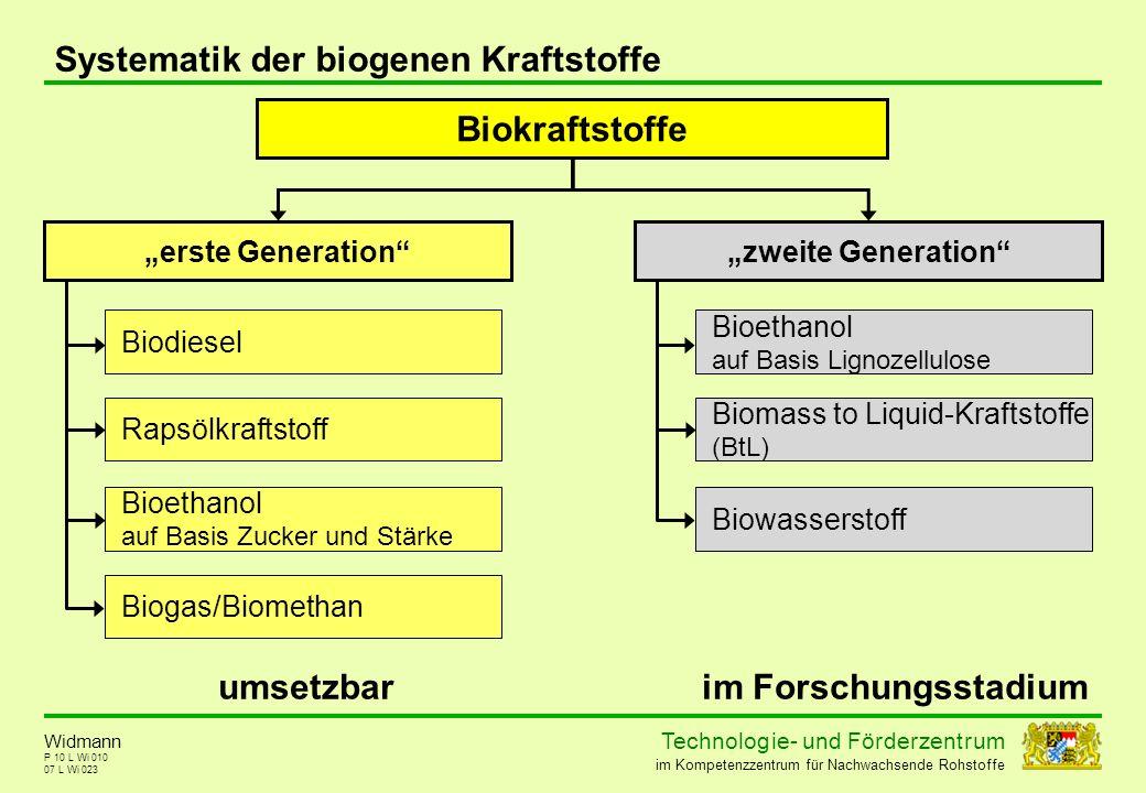 Biokraftstoffe umsetzbar im Forschungsstadium