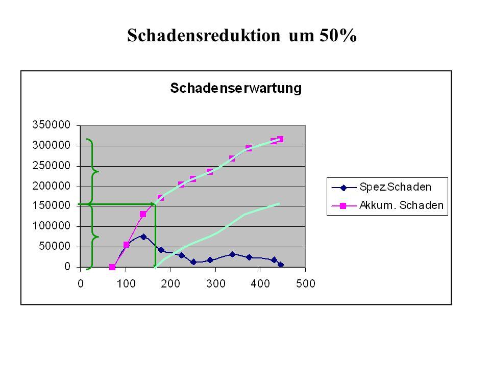Schadensreduktion um 50%