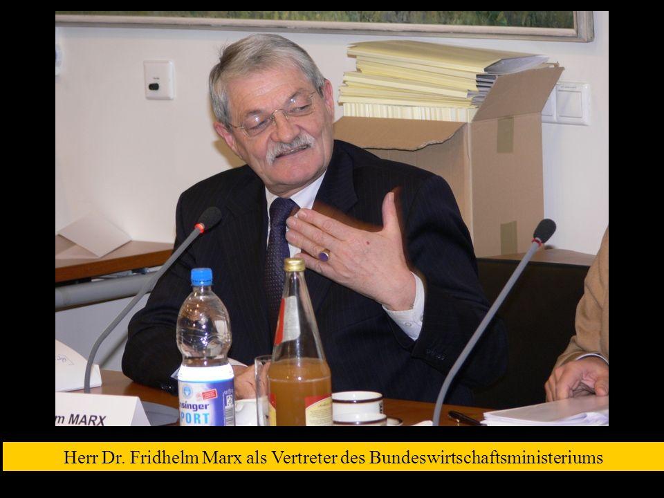 Herr Dr. Fridhelm Marx als Vertreter des Bundeswirtschaftsministeriums