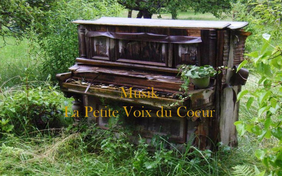 Musik La Petite Voix du Coeur