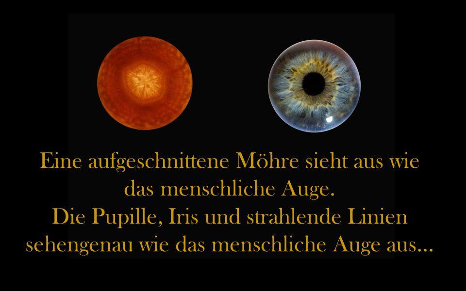 Eine aufgeschnittene Möhre sieht aus wie das menschliche Auge