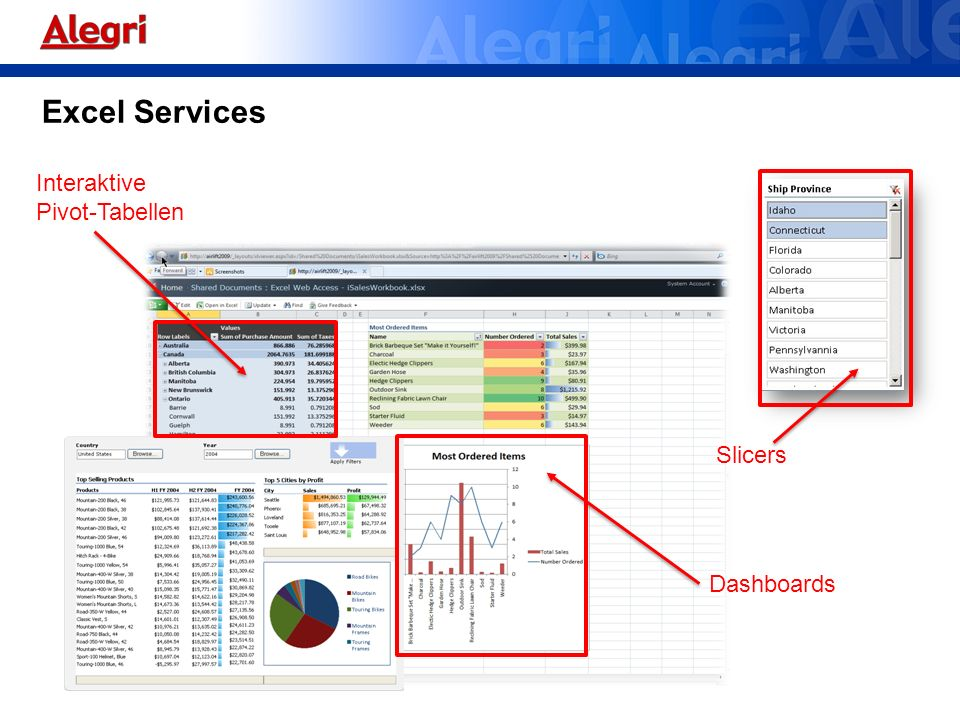 Excel Services Interaktive Pivot-Tabellen Slicers Dashboards