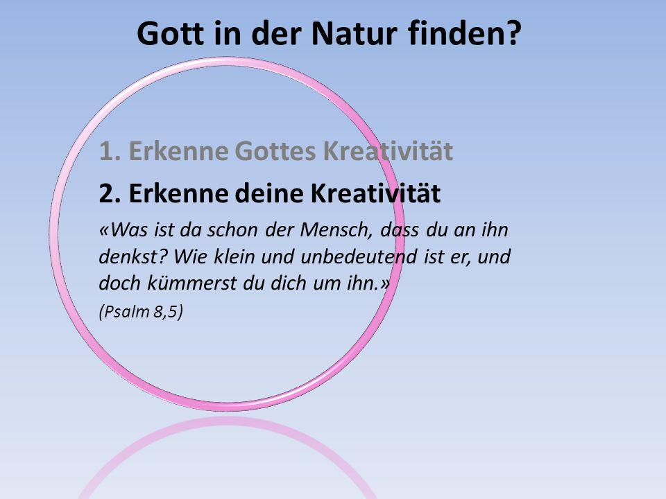 Gott in der Natur finden