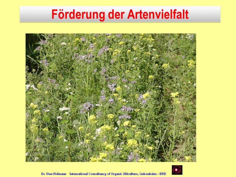 Förderung der Artenvielfalt