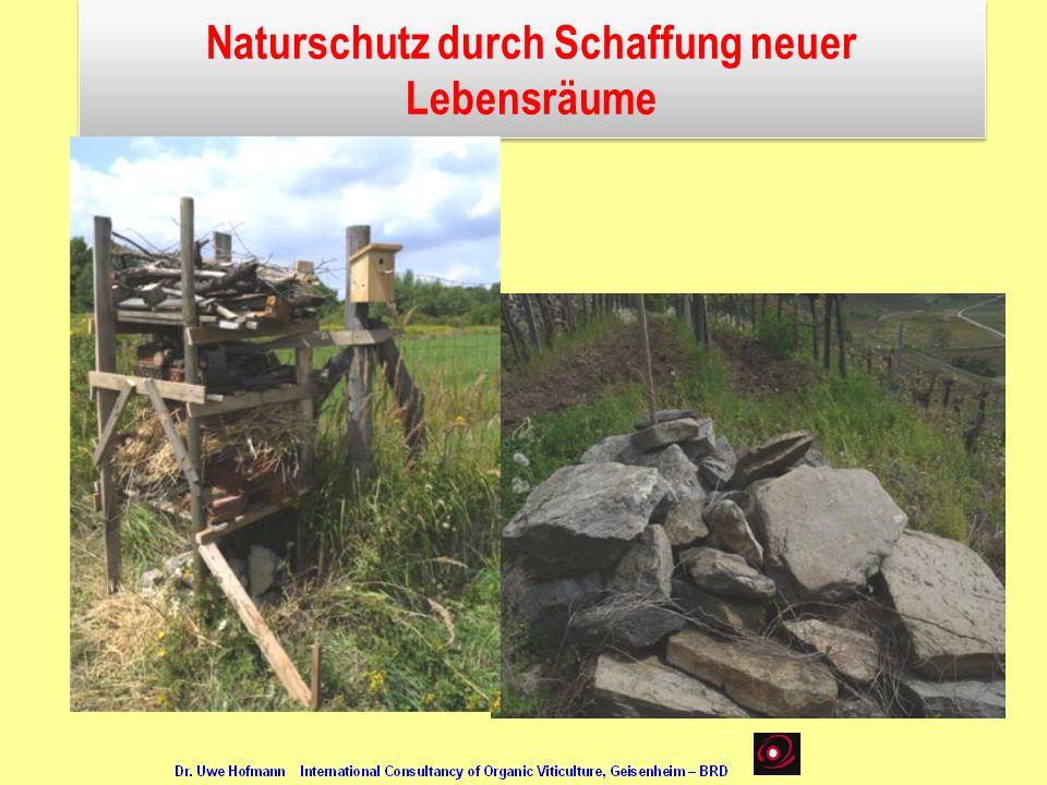 Naturschutz durch Schaffung neuer Lebensräume