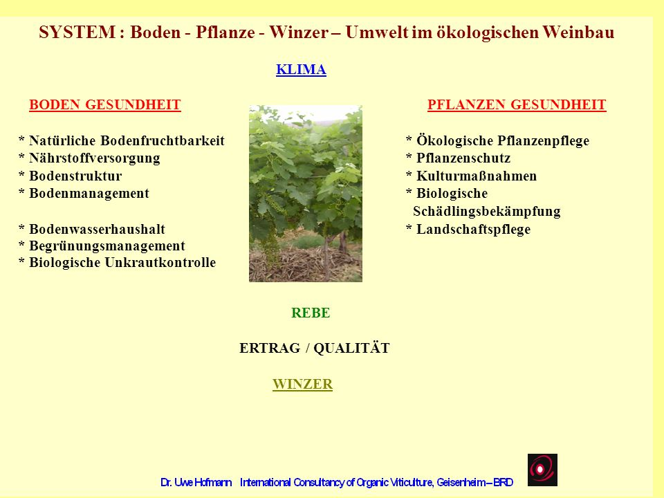 SYSTEM : Boden - Pflanze - Winzer – Umwelt im ökologischen Weinbau