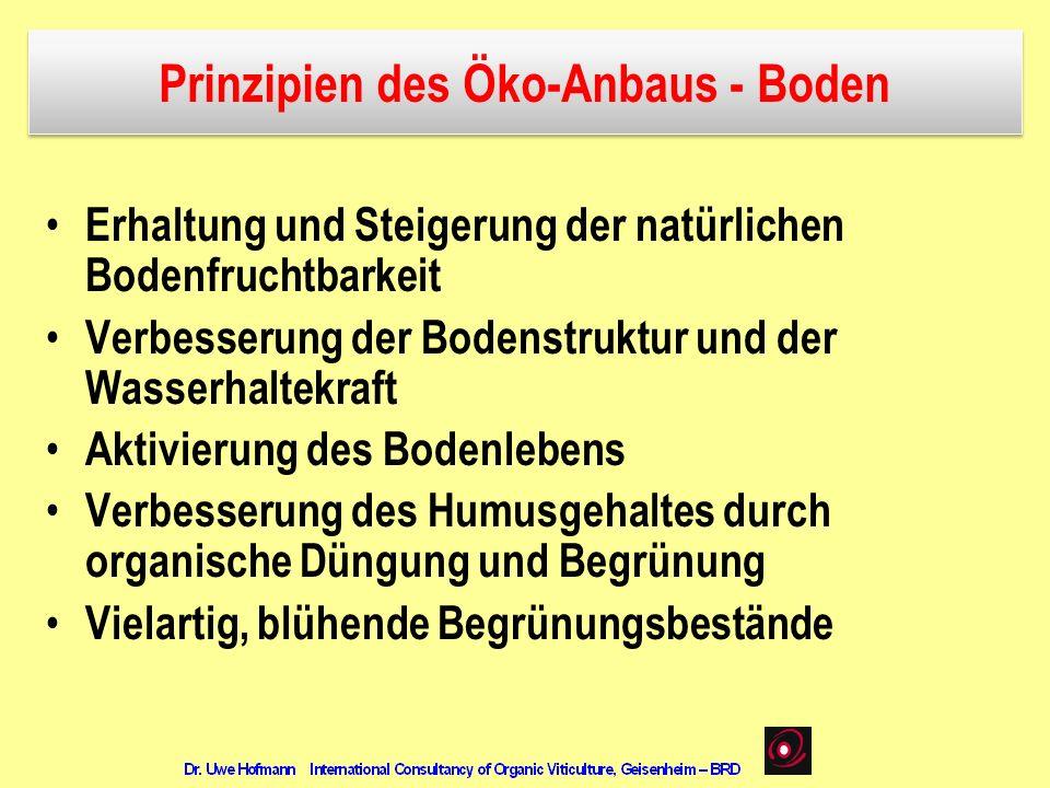 Prinzipien des Öko-Anbaus - Boden