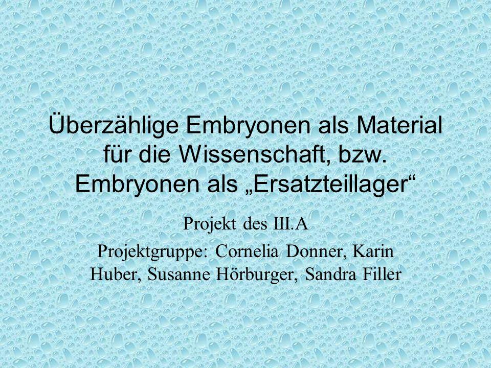 Überzählige Embryonen als Material für die Wissenschaft, bzw