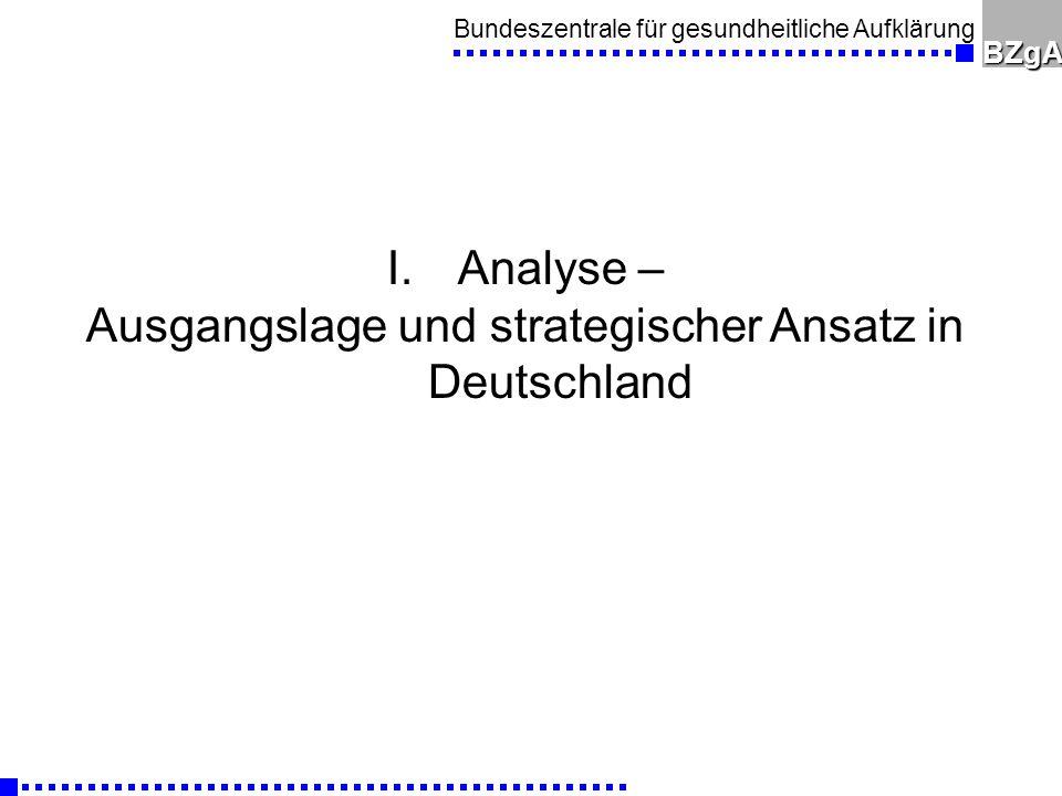 Ausgangslage und strategischer Ansatz in Deutschland