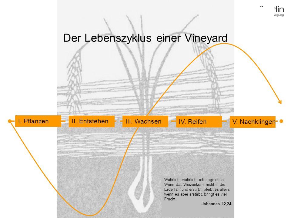 Der Lebenszyklus einer Vineyard