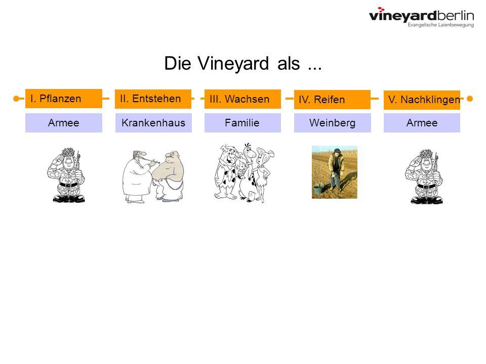 Die Vineyard als ... I. Pflanzen II. Entstehen III. Wachsen IV. Reifen