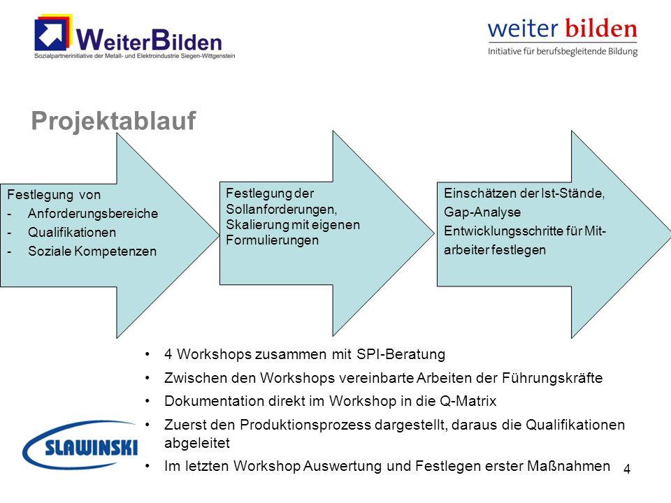 Projektablauf 4 Workshops zusammen mit SPI-Beratung