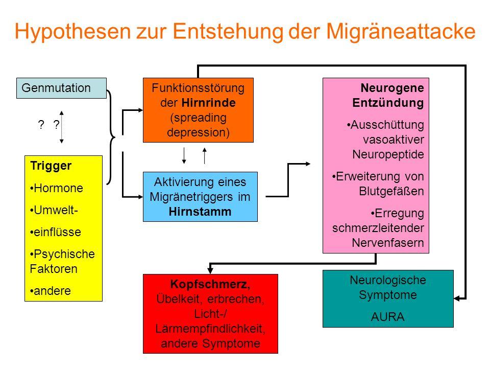 Hypothesen zur Entstehung der Migräneattacke