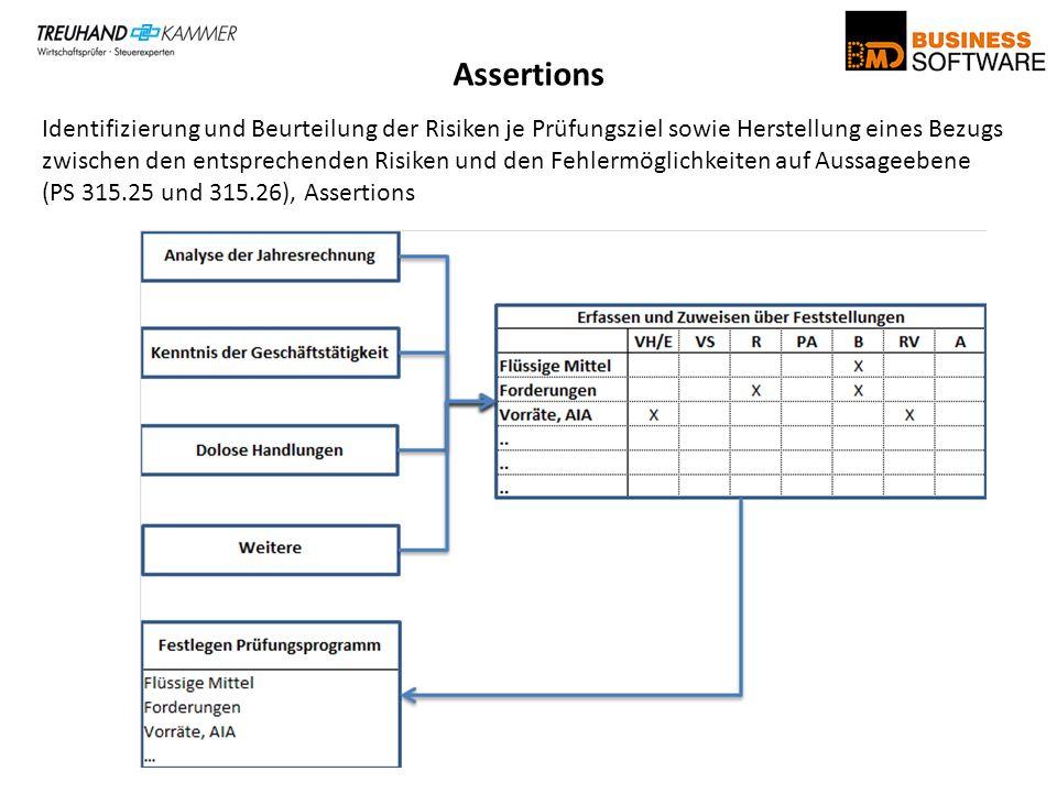 Assertions