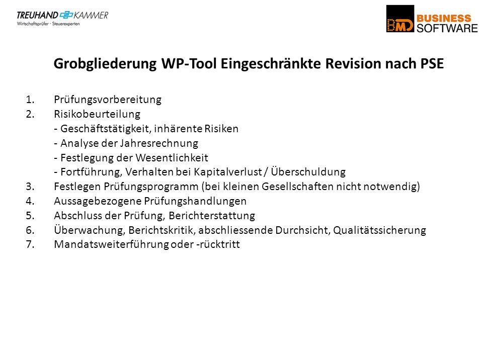 Grobgliederung WP-Tool Eingeschränkte Revision nach PSE