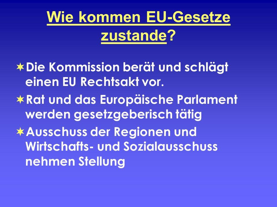 Wie kommen EU-Gesetze zustande