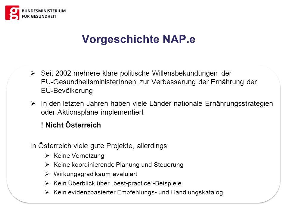 Vorgeschichte NAP.e