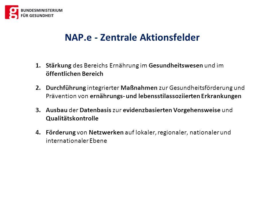 NAP.e - Zentrale Aktionsfelder