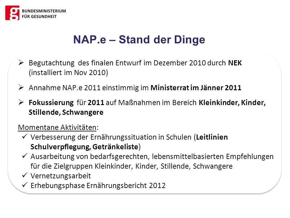 NAP.e – Stand der Dinge Begutachtung des finalen Entwurf im Dezember 2010 durch NEK (installiert im Nov 2010)