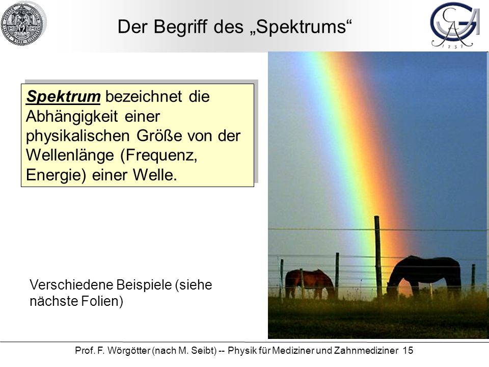 """Der Begriff des """"Spektrums"""