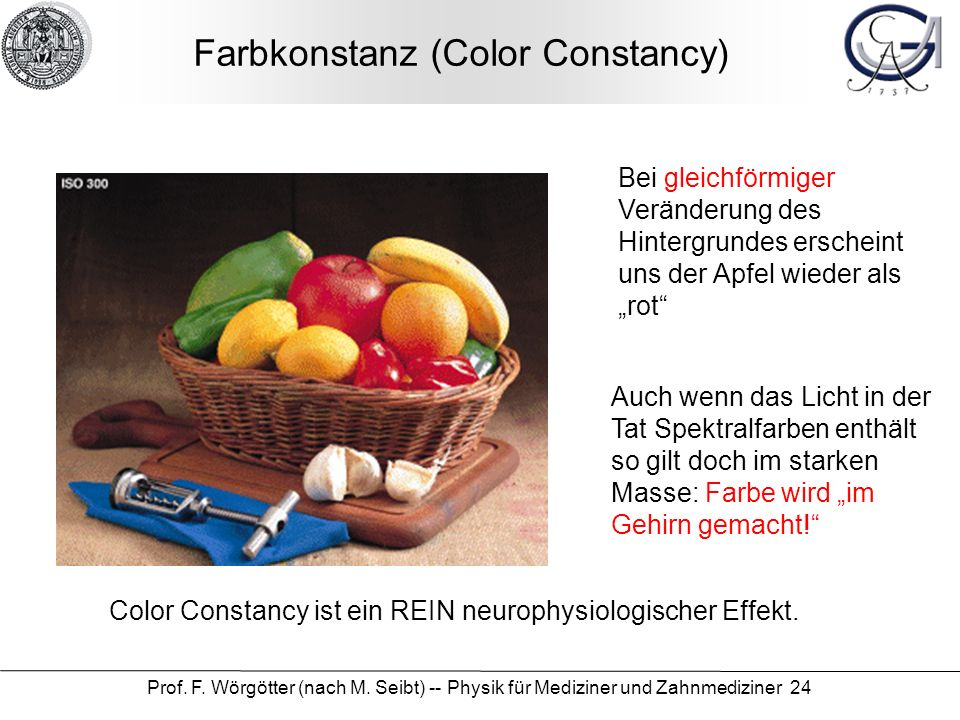Farbkonstanz (Color Constancy)