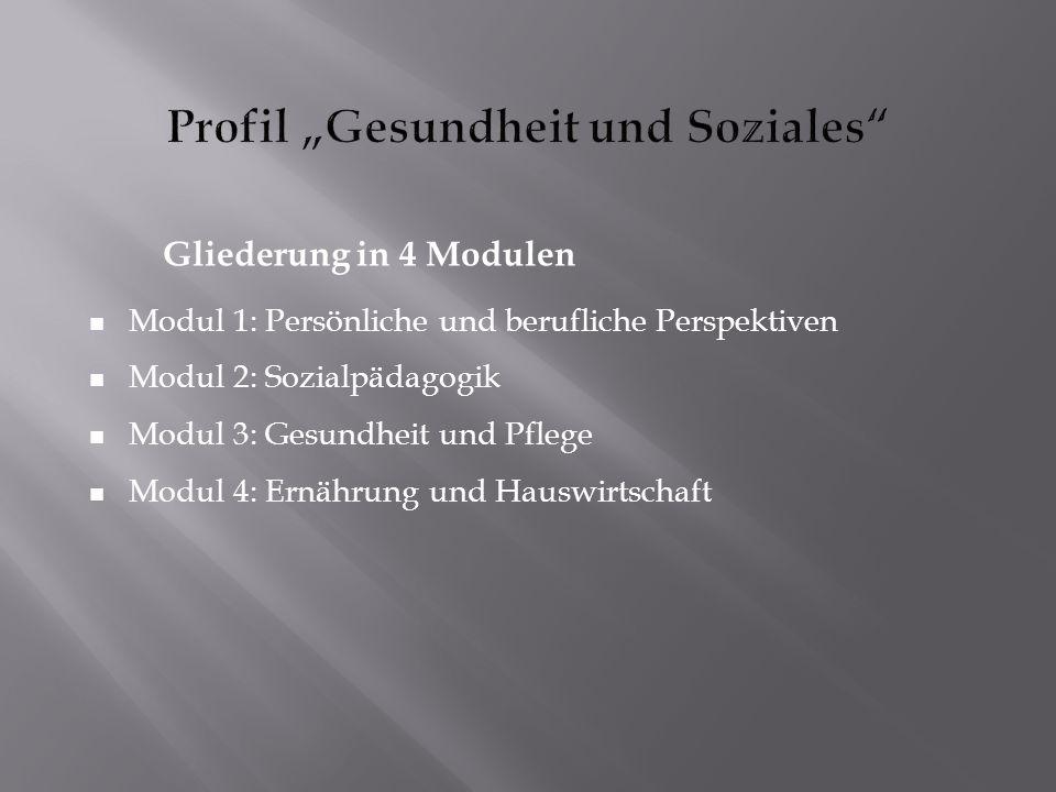 """Profil """"Gesundheit und Soziales"""