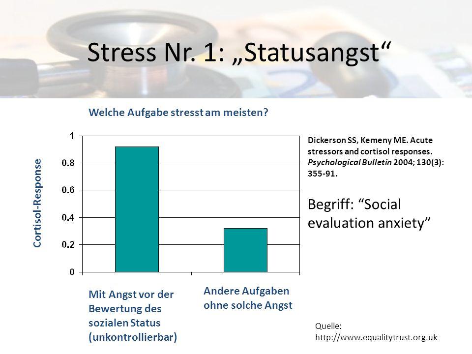 "Stress Nr. 1: ""Statusangst"