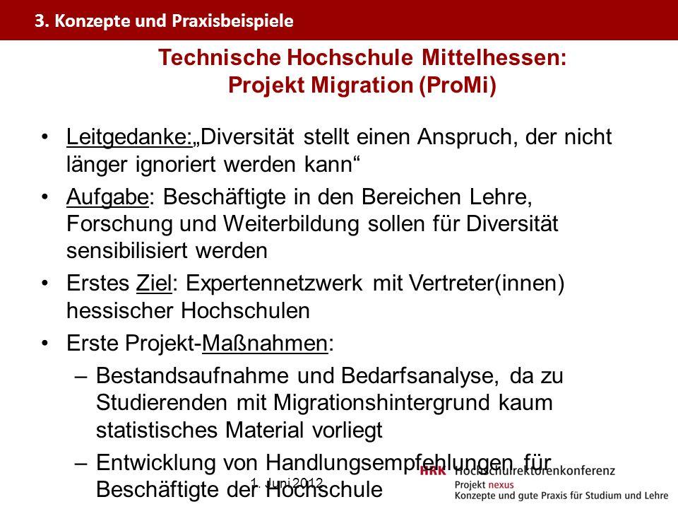 Technische Hochschule Mittelhessen: Projekt Migration (ProMi)