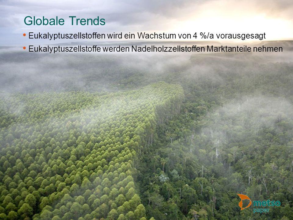 Globale Trends Eukalyptuszellstoffen wird ein Wachstum von 4 %/a vorausgesagt.