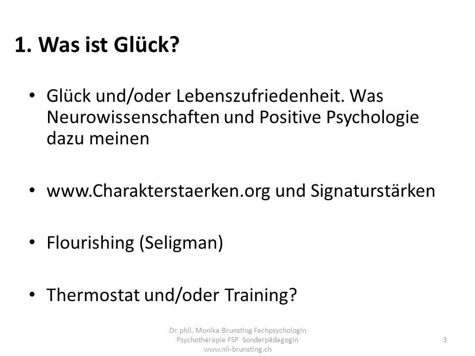 1. Was ist Glück Glück und/oder Lebenszufriedenheit. Was Neurowissenschaften und Positive Psychologie dazu meinen.